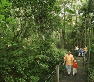 Sea Acres National Park and Rainforest Centre